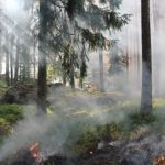 В ходе крупнейших учений НАТО в Польше начался сильный пожар