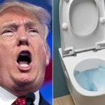 Трамп раскритиковал граждан США за частое смывание воды в туалете