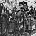 Опрос в Германии: школьники должны обязательно посещать Освенцим и Бухенвальд