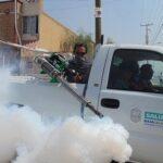 Ученые: человечеству угрожает экологическая катастрофа из-за чрезмерного использования пестицидов