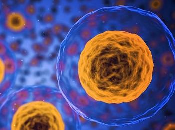 Продолжительность жизни при гепатите C